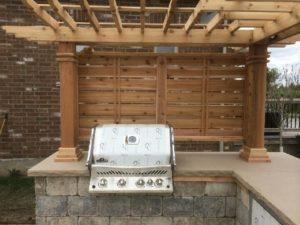 outdoor BBQ under a Trellis